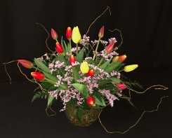 Local Mixed Tulips with Curly Willow Branches