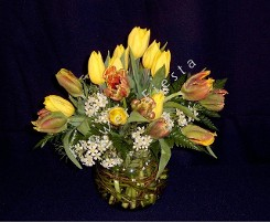 Local Double Tulip Mix with Willow Bowl