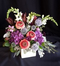 Cube Design Red Double Gerber Daisies and Echinops