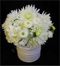 Pure White Posey Centerpiece in Ribbon Cylinder