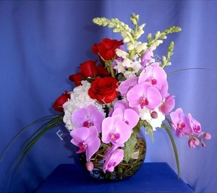 Phalaenopsis orchid rose bowl roses