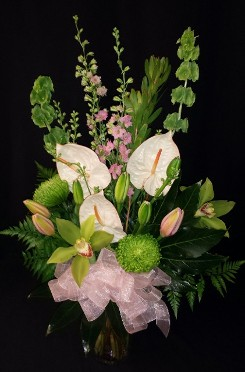 White anthurium lovely mix