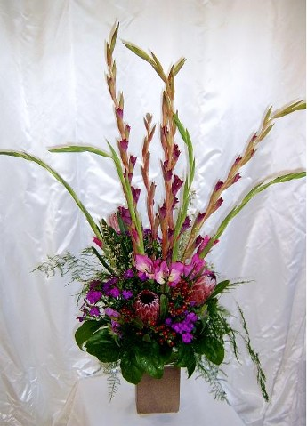 Long lasting Proteas and Purples
