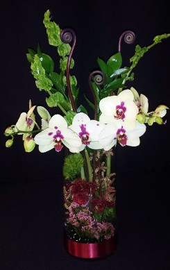 Submerged design moth orchid cylinder